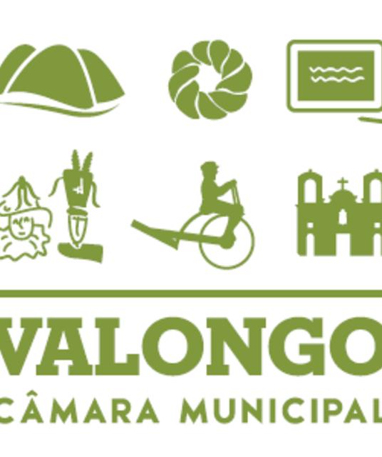 avatar Valongo City Hall